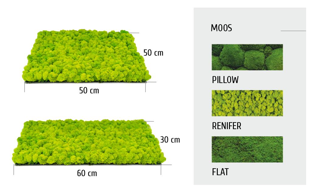 Unser Sortiment umfasst auch Paneele aus natürlichem Moos
